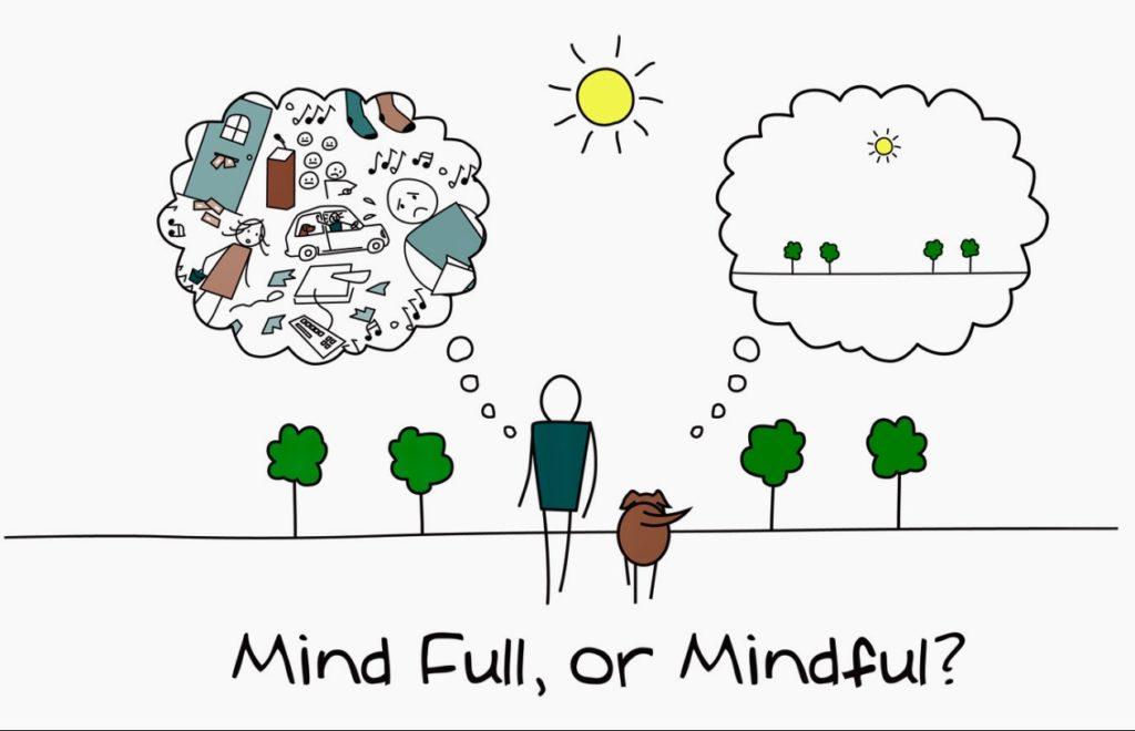 mindfulness originele basisopleiding Jon Kabatt Zin